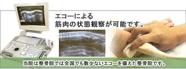エコーによる怪我の診断治療肉離れ、捻挫による靭帯の損傷、腱炎
